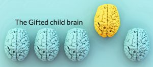 Gifted brain banner copy 3