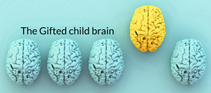 Gifted brain banner copy